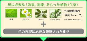 香草カラー説明